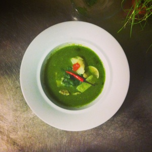 peruvian chicken and coriander soup